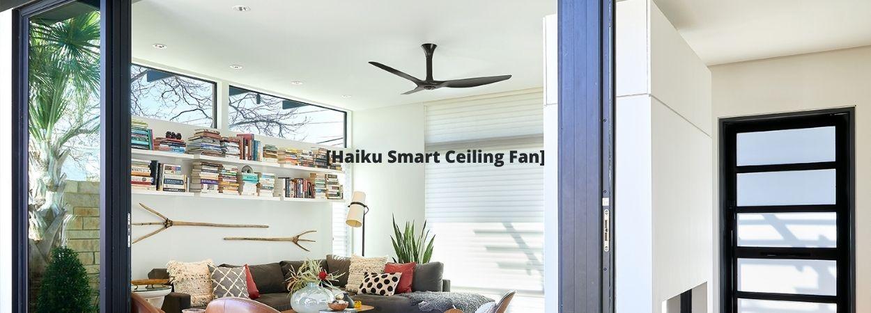 Quạt Trần Cao Cấp Haiku – Tiện Ích Cho Nhà Thông Minh Smart Home